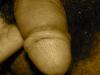NextGen scrollGallery2 thumbnail